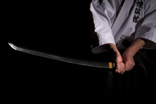 剣術 イメージ画像1
